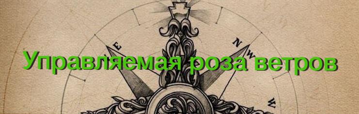 Альманах визуализации, выпуск №1/5. Управляемая роза ветров