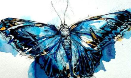 «Эффект бабочки» в QlikView
